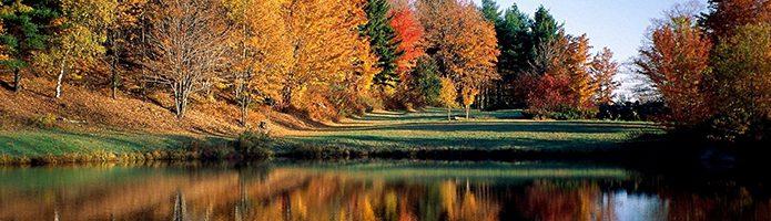 Nature Desktop Wallpapers 37 69